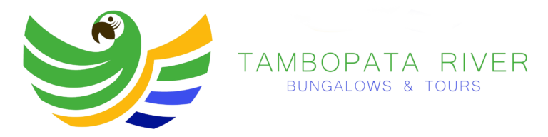 tambopata river_ bungalows